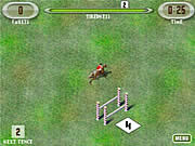 Click to Play Show Jumping