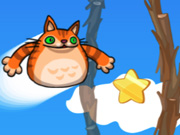 Click to Play Angry Cat