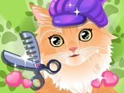 Click to Play Kitty Groomer
