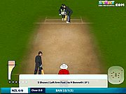 Click to Play Online Cricket 2011