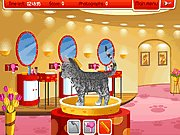 Click to Play Petz Fashion